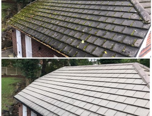 Garage & Porch roof cleaning examples